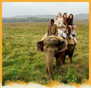 Elephant Safaris in India