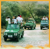 Jeep Safaris in India