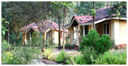 The Wild Chalet, Kanha