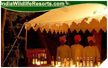Sher Bagh Resort, Ranthambore National PArk