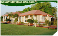 Tiger Den Resort, Ranthambore National Park